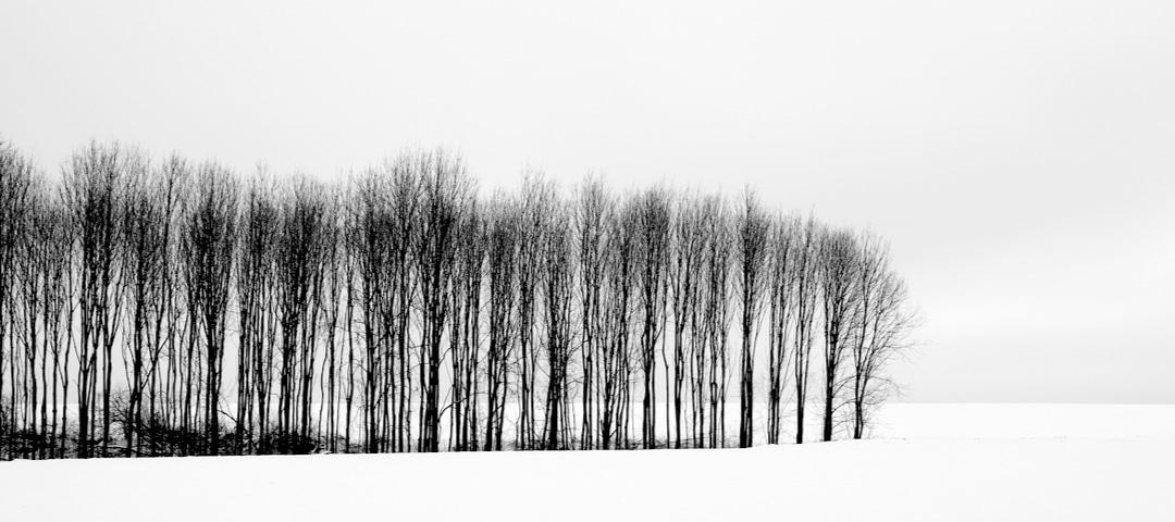 Heinrich Heine Ein Wintermärchen