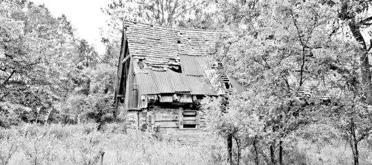 Sommerhaus, später